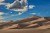 'Sand dunes in afternoon sun at Great Sand Dunes National Park and Preserve; Colorado, United States of America'