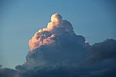 'Thunderhead forming in evening sky; Edmonton, Alberta, Canada'