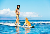 Attractive Young Woman Surfing with her Dog. Riding Wave Together in Ocean. Surfing Dog.