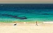'A young woman walks on the beach of the mediterranean sea with her dog; Tarifa, Cadiz, Andalusia, Spain'