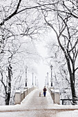 'Walking a dog over footbridge on a frosty winter day in Assiniboine Park; Winnipeg, Manitoba, Canada'