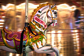 'Close up of a painted horse on a carousel with blurred lights in the background; Sunderland, Tyne and Wear, England'