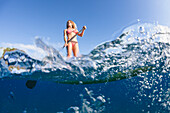 'Surf instructor on a stand-up paddle board off Canoe Beach; Maui, Hawaii, United States of America'