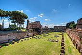 Stadium of Domitian, Palatine hill, Forum romanum, Rome, Latium, Italy