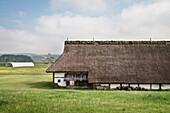 long house and archeological site at open air museum Heuneburg, celtic settlement Pyrene, Hundersingen urban district of Herbertingen, Sigmaringen district, Swabian Alb, Baden-Wuerttemberg, Germany