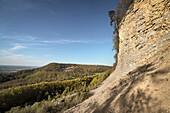 so called Moessingen landslide, Mössingen, Tuebingen district, Swabian Alb, Baden-Wuerttemberg, Germany