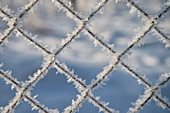 ice crystals at fence, winter landscape at Blue River, Blue River Valley around Blaubeuren, Alb-Danube district, Swabian Alb, Baden-Wuerttemberg, Germany