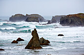 Rock formations and waves at the Pacific Ocean at Bandon , <Face Rock> State Scenic Viewpoint , Oregon , USA