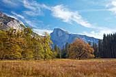 View across Yosemite Valley at Half Dome , Yosemite National Park , Sierra Nevada , California , U.S.A. , America