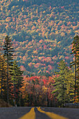 A road along a bright mix of reds, oranges, yellows and greens in the White Mountains of New Hampshire.