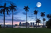WEST PALM BEACH SKYLINE FROM LAKE DRIVE PARK PALM BEACH FLORIDA USA.