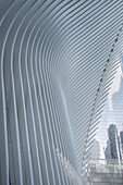 the Oculus is a futuristic train station by famous architect Santiago Calatrava next to WTC Memorial, Manhattan, New York City, USA, United States of America