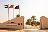 Al Maha Conservation Reserve. Arabian Desert. Dubai. United Arab Emirates