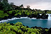 Wai'anapanapa State Park. A leafy location with sea caves and volcanic cliffs. Hana Highway. Maui. Hawaii. This is a great stop in the Road to Hana. Beautiful vistas, black sand beaches, hiking and ample parking. The turn off can be easily missed so make