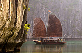 Vietnam, Quang Ninh Province, Along Bay, listed as World Heritage by UNESCO, traditional junk