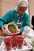 Latvia (Baltic States), Riga, European capital of culture 2014, central market, wild strawberries