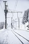 Snow-covered railroad track, Andermatt, Uri, Switzerland