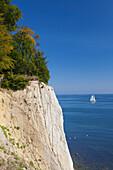 Sailing ship and chalk cliffs, Jasmund national park, Ruegen, Baltic Sea, Mecklenburg-West Pomerania, Germany