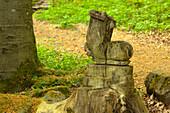 "Wooden sculpture ""Hiking boot"" at Gangolfsberg rock, near Urspringen, Rhoen, Bavaria, Germany"
