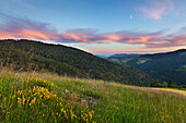 Landscape at Wiedener Eck, Muenstertal, Black Forest, Baden-Wuerttemberg, Germany