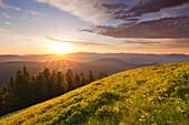Morning mood at Belchen, Black Forest, Baden-Wuerttemberg, Germany