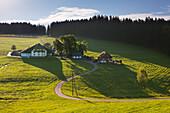 Farmhouses in Jostal valley, Black Forest, Baden-Wuerttemberg, Germany