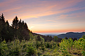 On the Grosser Inselsberg, Thuringia Forest, Thuringia, Germany