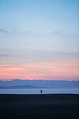 Young man running over a meadow during sunset, Allgaeu, Bavaria, Germany