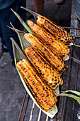 Mexico, Federal District, Mexico City, Coyoacan district market, roasted corn cobs