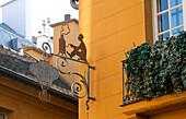 France, Paris, quartier Mouffetard, Brulerie Saint Jacques (roaster)