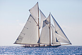 'Classic Schooner ''Elena of London'' naval architect Nathanael Herreshoff 1910, Classic Sailing Regatta ''Régates Royales'', Old Port of Cannes, Cotes d'Azur, France'