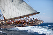 'Schooner ''Elena of London'', Naval Architect Nathanael Herreshoff 1910, Classic Sailing Regatta ''Les Voiles de St. Tropez'', St. Tropez, Côte d'Azur, France'