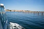 Boat trip at the Étang de Thau, Bouzigues, Mediterranean Sea, Hérault, Languedoc Roussillon, France