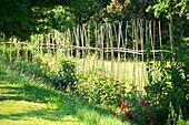 France, Vaucluse (84), Luberon, Lourmarin, labelled Les Plus Beaux Villages de France (The Most Beautiful Villages of France), la Feniere Inn, vegetable garden