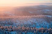 Finland, Lapland Province, Kuusamo, chalet in the taiga