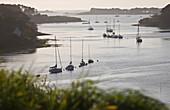 Frankreich, Finistère, in der Nähe von Plouguernau, Blick über Aber Wrac'h