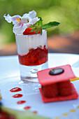 France, Vaucluse, Isle sur La Sorgue, strawberry special, the surprise of the chef, Delphine Jullien, head Chef, Domaine de la Petite Isle, Hotel restaurant