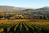 France, Ain, general view of Culoz, in the background the Rhone River