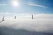 snowdrift, Schauinsland, Freiburg im Breisgau, Black Forest, Baden-Wuerttemberg, Germany