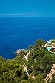 Overhead of luxurious Finca and coastline, Banyalbufar, Mallorca, Balearic Islands, Spain