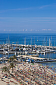 Overhead of palm trees and people on Playa s'Arenal beach with marina, s'Arenal, near Palma, Mallorca, Balearic Islands, Spain