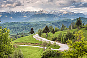 Rural countryside and Carpathian Mountains near Bran Castle at Pestera, Transylvania, Romania, Europe