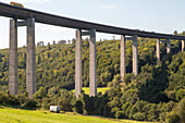 German Autobahn, A 7, Grenzwald bridge, pillars, bridge piers, forest, green, motorway, freeway, speed, speed limit, traffic, infrastructure, Germany