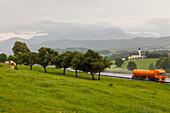 German Autobahn, A 8, farming, cows, green pastures, hills, orange truck, motorway, highway, freeway, speed, speed limit, traffic, infrastructure, Bavaria, Germany