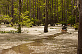 A paddler makes tracks through a desolate section of Louisiana's vast Atchafalaya Swamp.