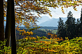 View from Aidling hights, Alps, Upper Bavaria, Germany, Europe