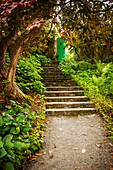 Stairs leading up to a green door through a tree lined path, County Donegal, Ireland