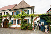Historical Theresienstrasse, Rhodt unter Rietburg, German Wine Route or Southern Wine Route, Palatinate, Rhineland-Palatinate, Germany