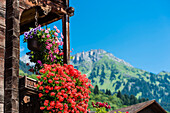 Luxuriant floral decorations on an old timber house with view towards the mountains, Saas im Praettigau, canton the Grisons, Switzerland