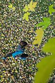 Junger Mann läuft über eine mit Blättern bedeckte Wiese, Allgäu, Bayern, Deutschland